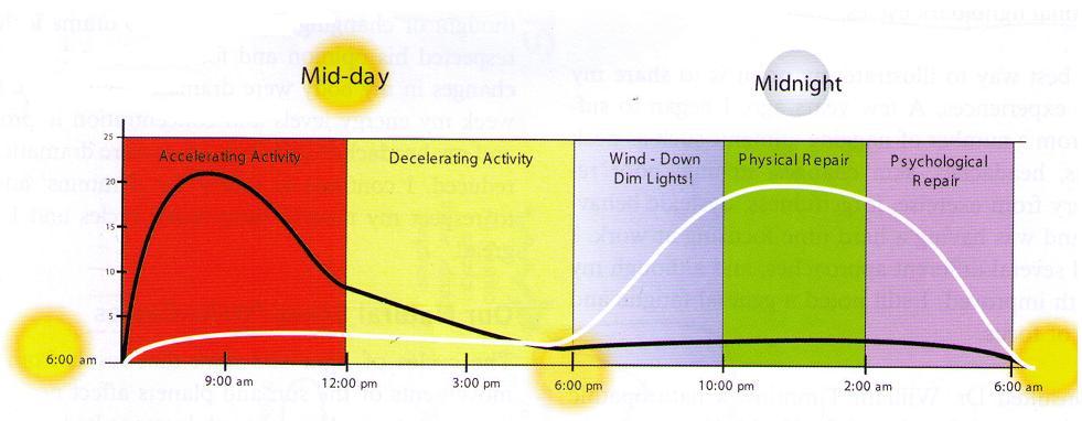 Ciclo horario natural